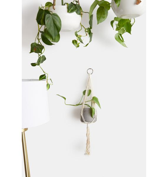Macra-Yay Macrame And Cement Planter