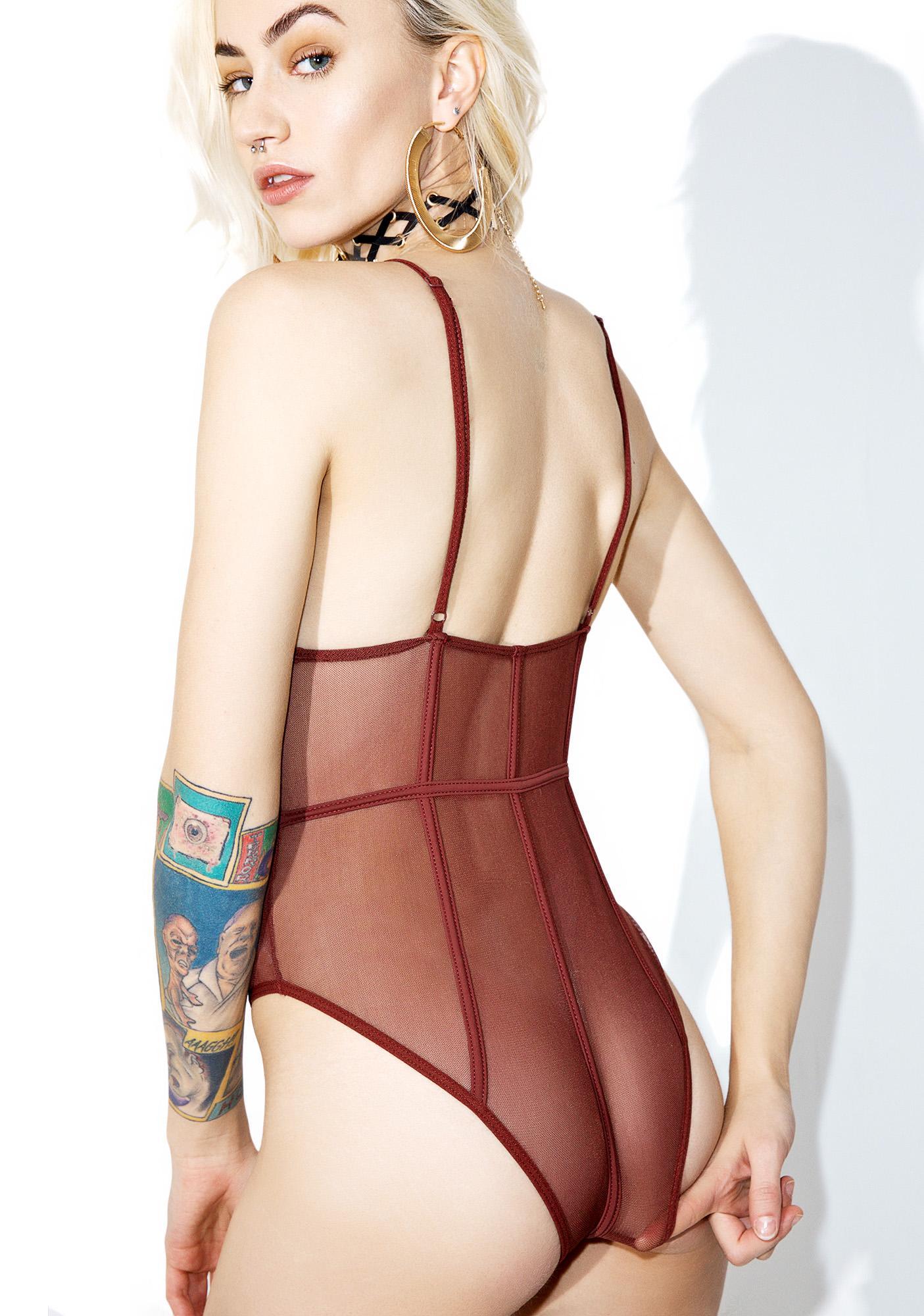 Passionate Plea Sheer Bodysuit