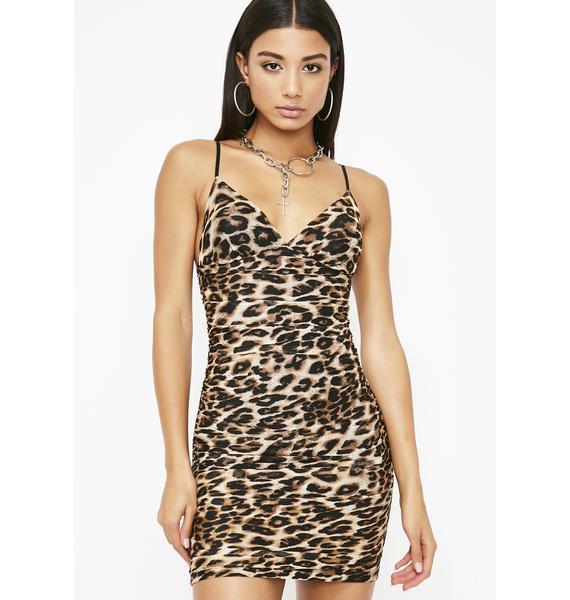 Wildcat Mini Dress