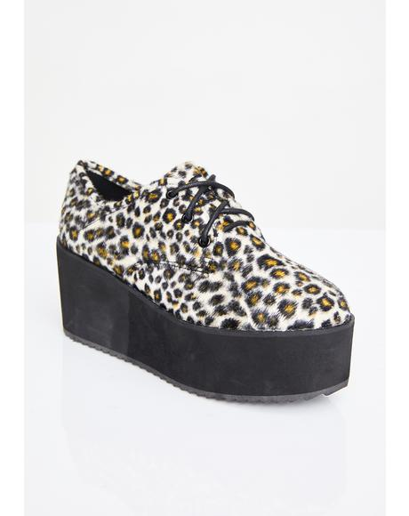 Fierce Stomp Lo Platform Oxfords