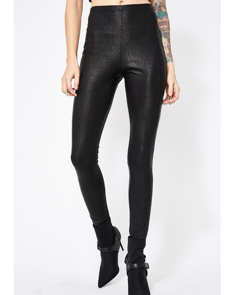Night Liquid Toxins Snakeskin Leggings