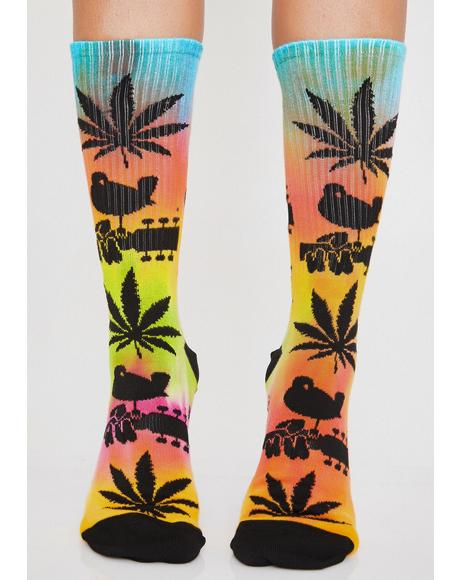 Woodstock Plantlife Socks