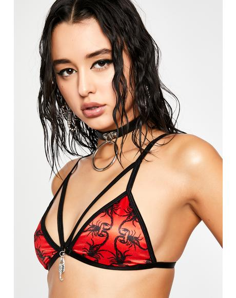 Dressed To Kill Strappy Bralette