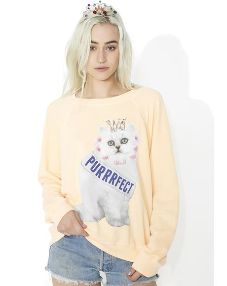 Purrfect Sommers Sweater