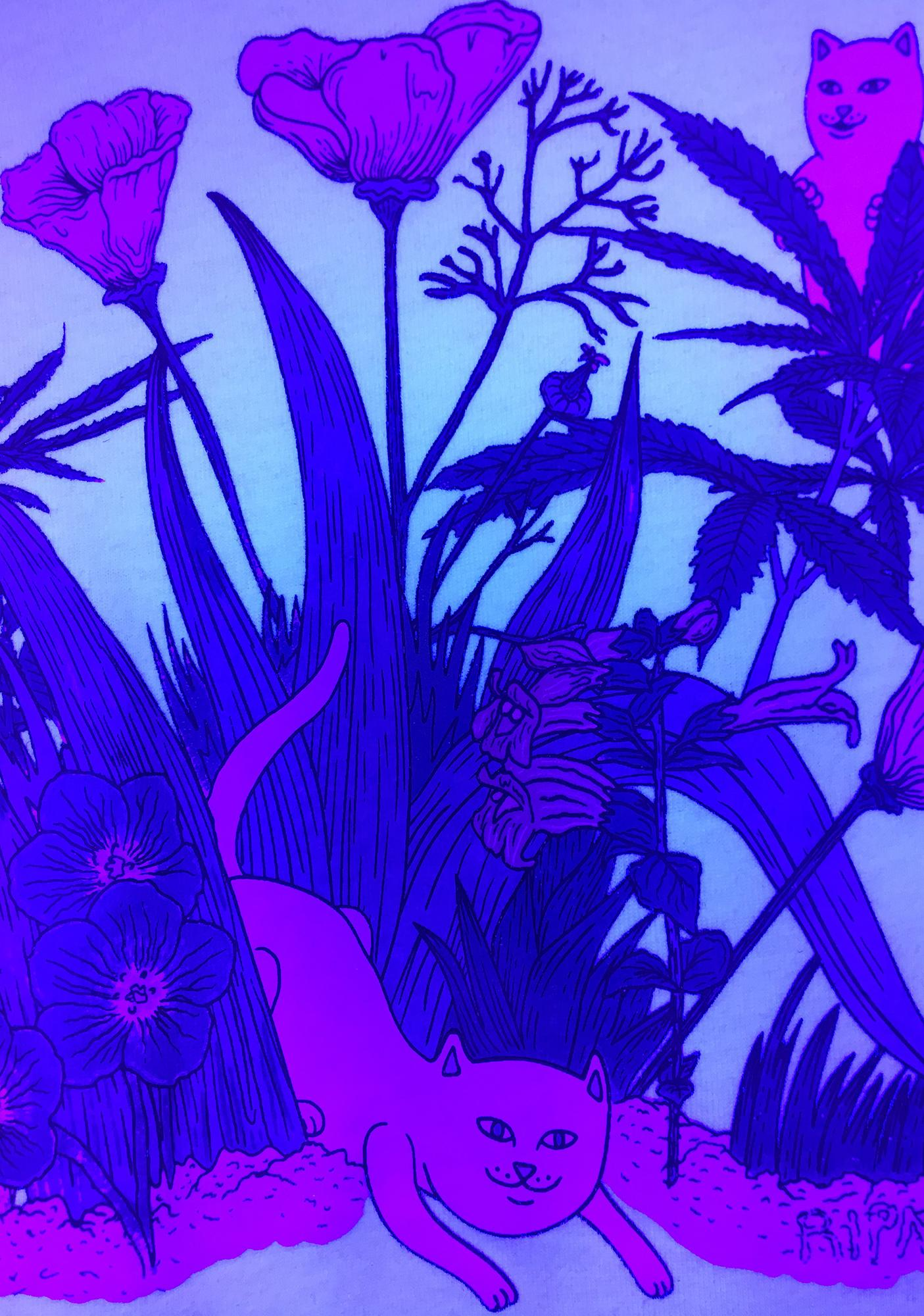 RIPNDIP Paradise UV Graphic Tee