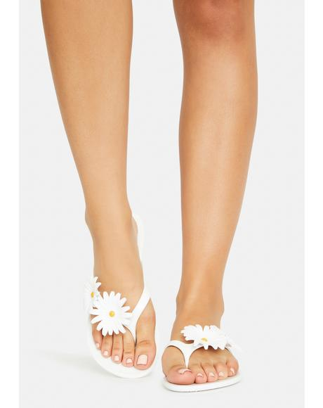 Bliss Altoona Sandals