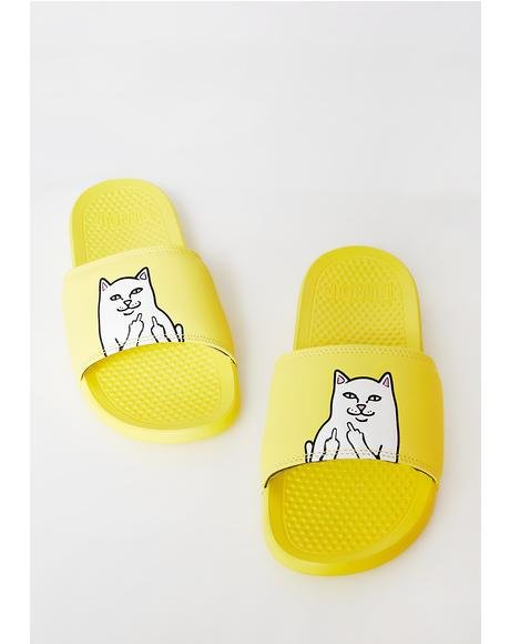 Sunny Lord Nermal Slides