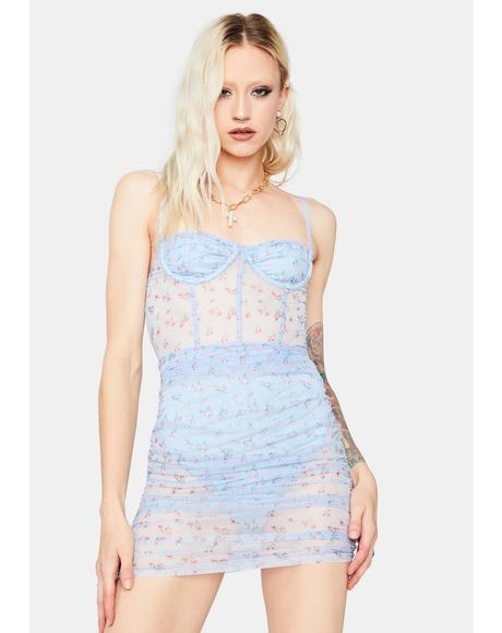 Sky New Eden Lace Bustier Dress