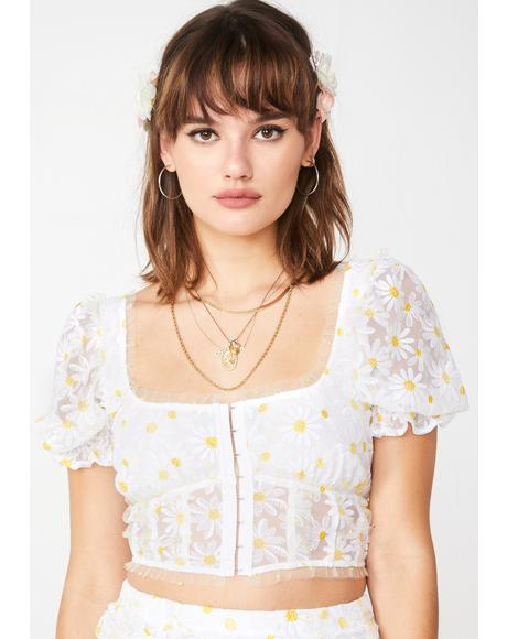Brulee Daisy Crop Top