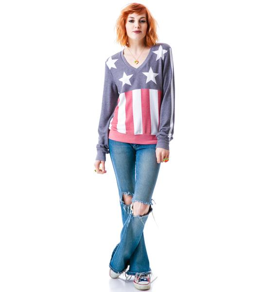 Wildfox Couture Stars & Stripes V-Neck Baggy Beach Jumper