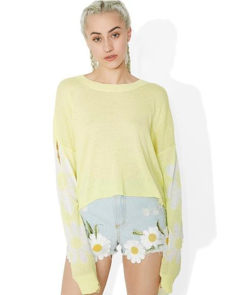 Daisy Fields Powell Sweater