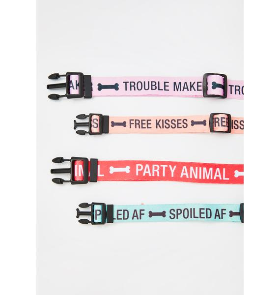 Here Comes Trouble Large Dog Collar