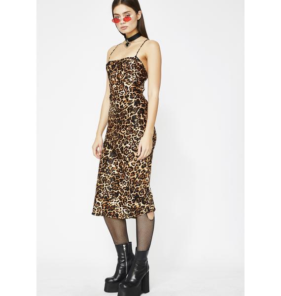 Feline Lucky Leopard Dress