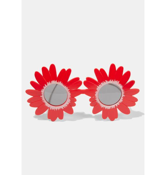Late Bloomer Sunflower Sunglasses