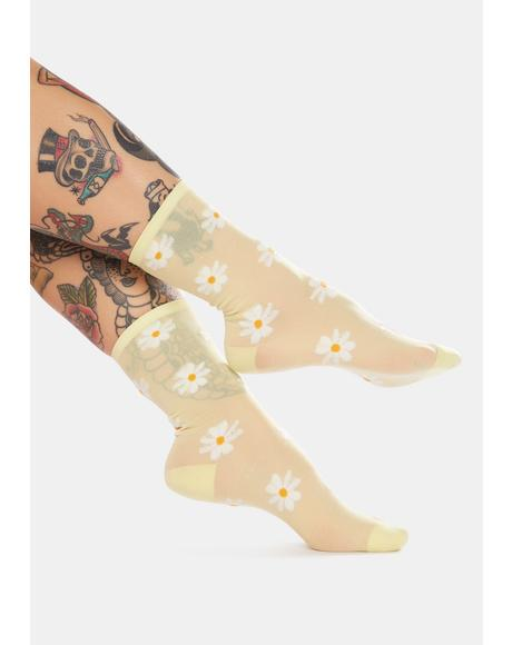 Sunny Dates With Daisies Sheer Crew Socks