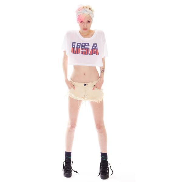 Wildfox Couture Stars And Stripes Cabana Crop Tee