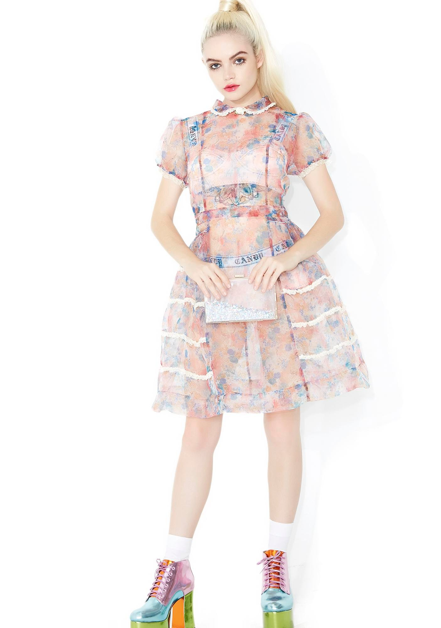 Sugar Thrillz Rococo Rose Sheer Dress