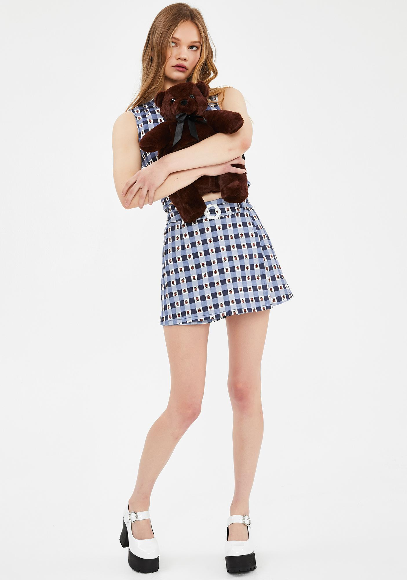 dELiA*s by Dolls Kill Miss Ladybug Gingham Skort