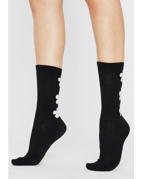 Daisy Love Crew Socks