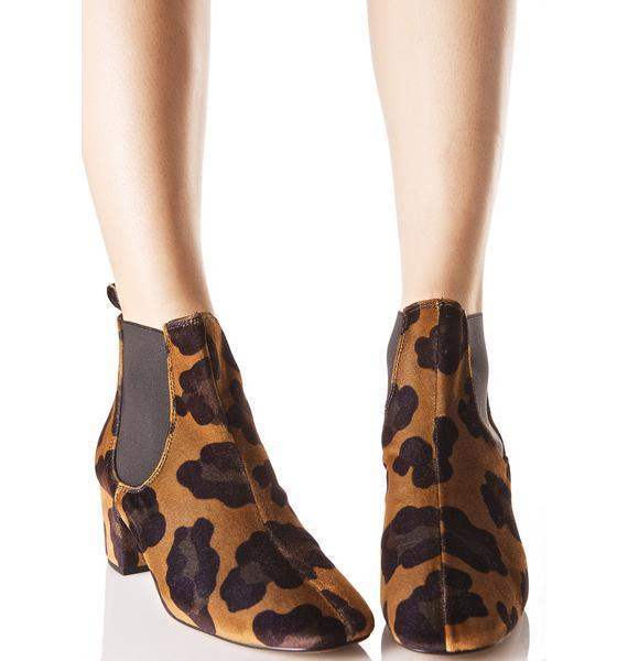 Wildcat Chelsea Boots