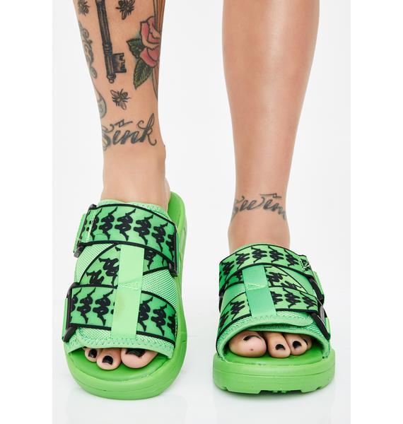 Kappa Green 222 Banda Mitel 1 Slides
