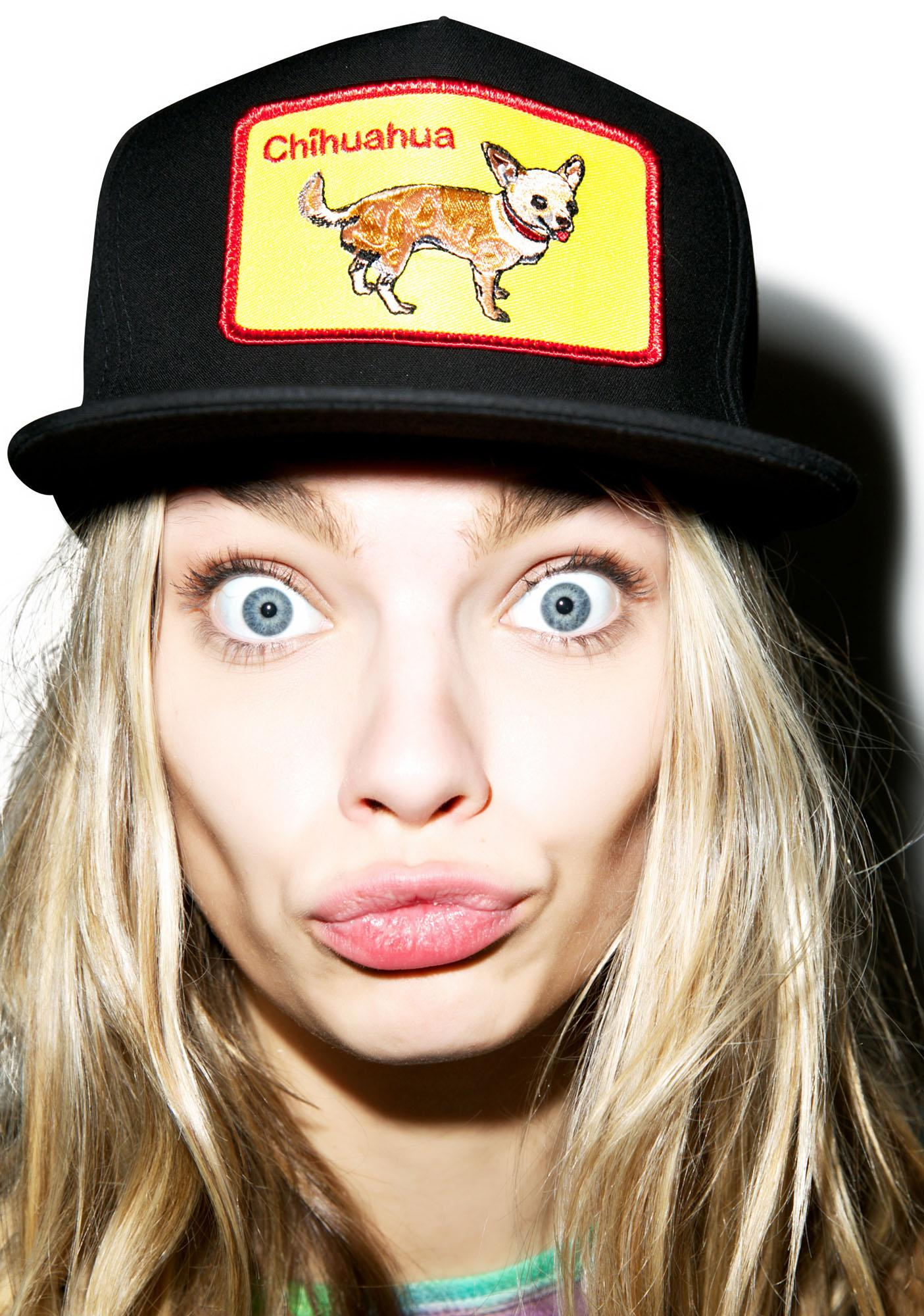 Dog LTD. Chihuahua Snapback
