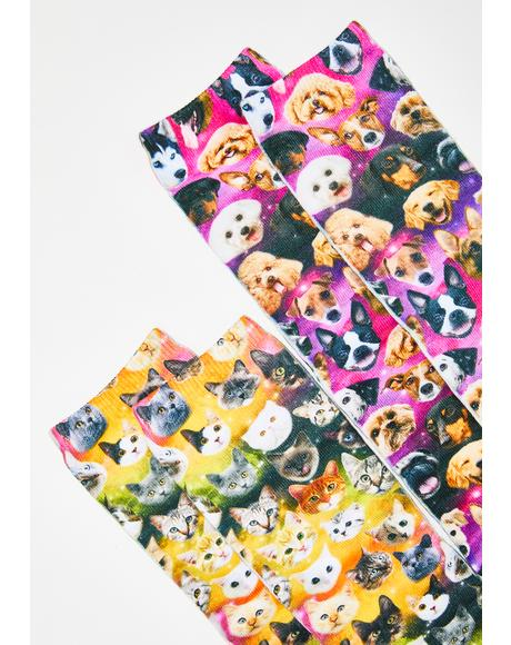 Raining Cats And Dogs Socks Set