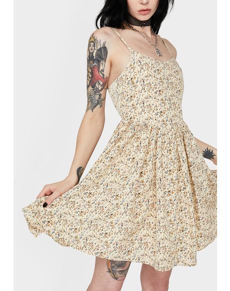Floral Cami Skater Dress