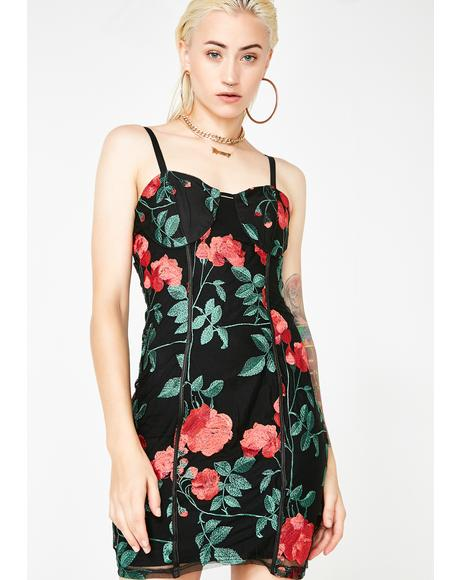 The Frida Rose Mesh Dress