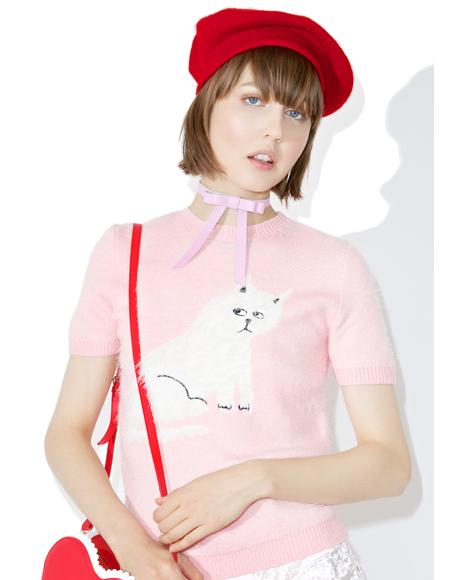 Furry Kitty Knit Top