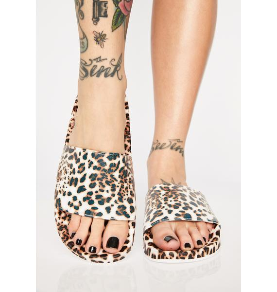 Fierce Spotty N' Thotty Print Slides