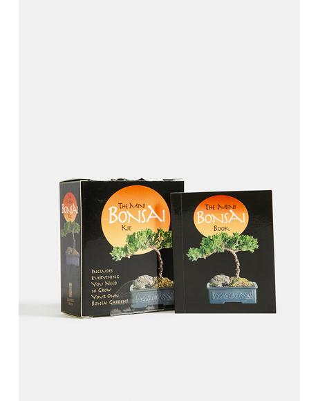 Watch Me Grow Mini Bonsai Kit