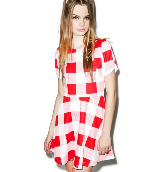 Joyrich Picnic Cruise Skater Dress