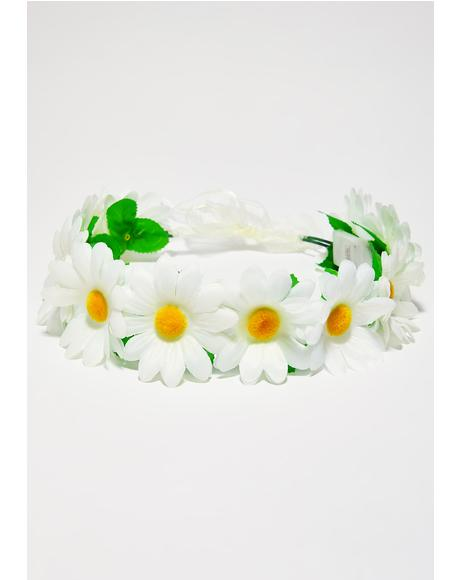 Daisy Multi Light-Up Flower Crown