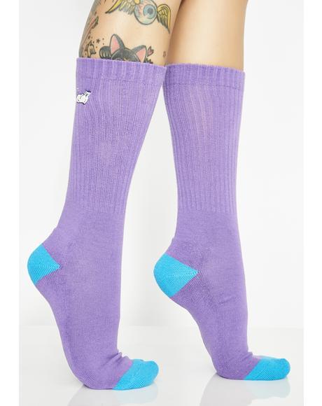 Lavender Castanza Socks