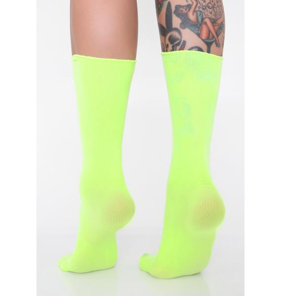 Honey Sweet Walk Crew Socks
