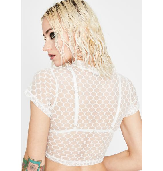 Pure Saturated Visionz Mesh Crop Top
