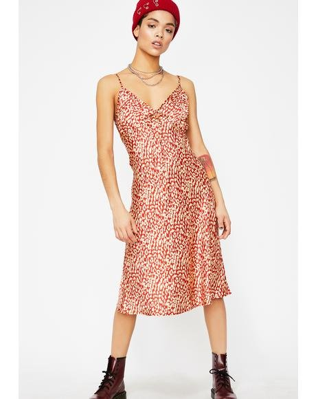 Fire Let's Get Fierce Leopard Dress
