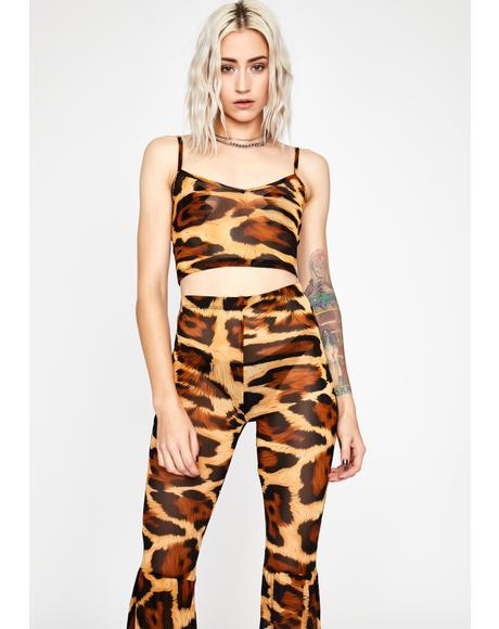 Brutal Bloodline Leopard Set
