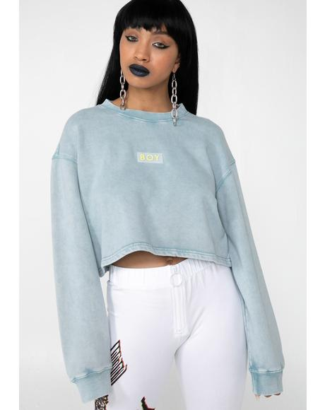 Boy Eagle Cropped Sweatshirt