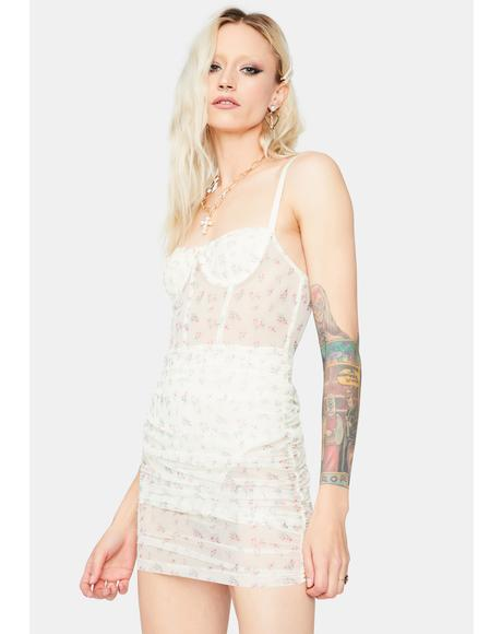 New Eden Lace Bustier Dress
