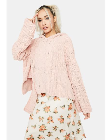 Pretty Wildest Dreams Knit Sweater