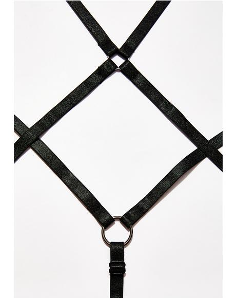Diamond Devil Harness