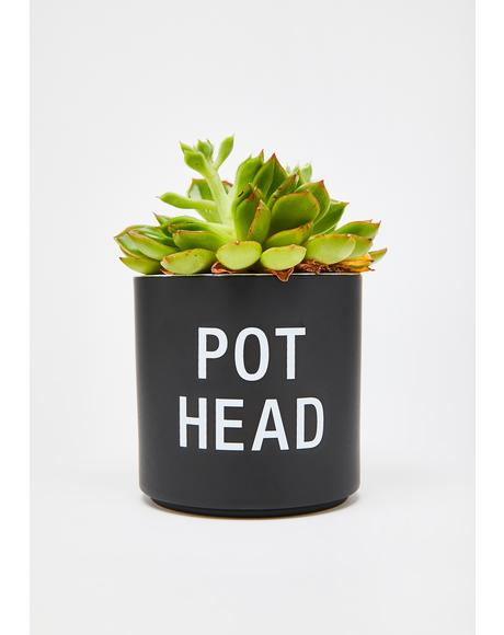 Pot Head Planter