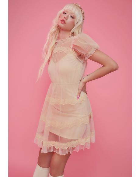 Dream Meadow Sheer Babydoll Dress