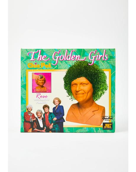 Golden Girls Rose Planter