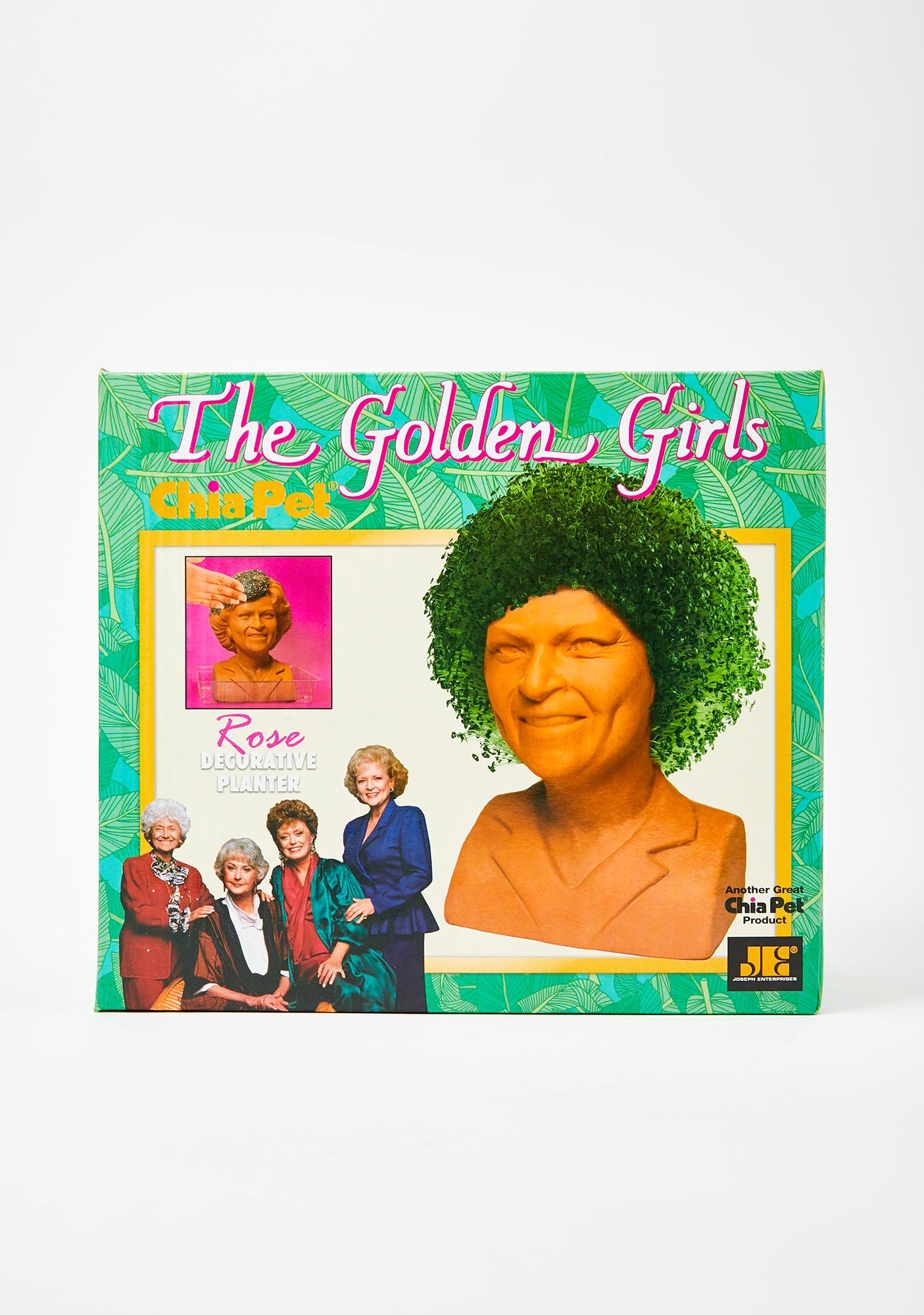 Chia Pet Golden Girls Rose Planter