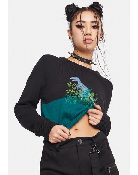 Rawr Knit Sweater