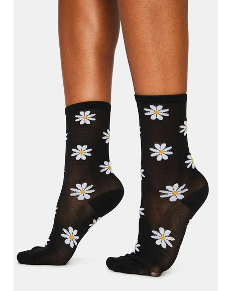 Noir Dates With Daisies Sheer Crew Socks