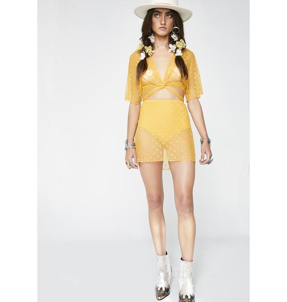 Shinin' Hard Sheer Skirt